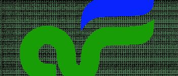 Air Florida Logo Logo