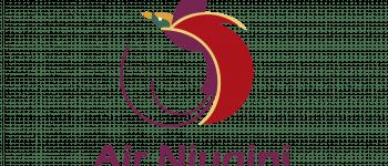 Air Niugini Logo Logo