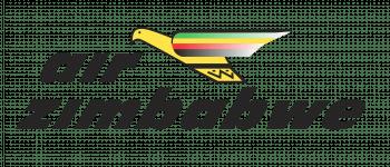 Air Zimbabwe Logo Logo