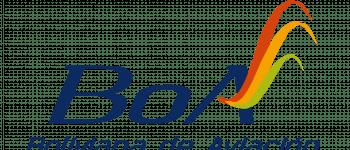 Boliviana de Aviación Logo Logo