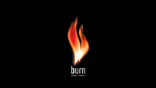 Burn Logo 2004