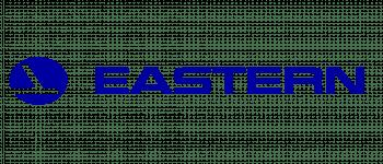 New Eastern Air Lines Logo Logo