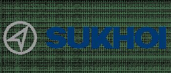 Novosibirsk Aircraft Production Association Logo Logo