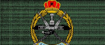 Royal Air Force of Oman Logo Logo