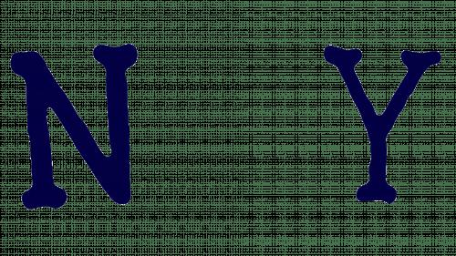 Yankees Logo 1907